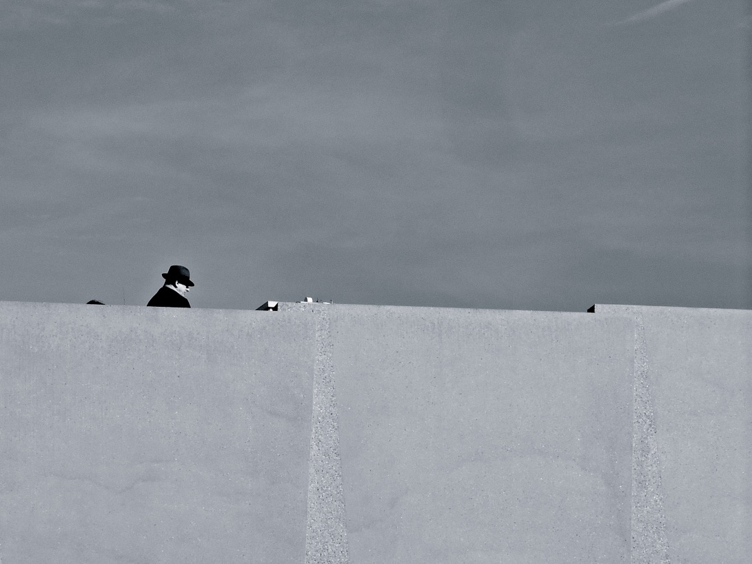Sentinel (I). © Chris Bronsk 2014.